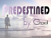 Predestined by God